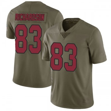 Youth Nike Arizona Cardinals A.J. Richardson Green 2017 Salute to Service Jersey - Limited