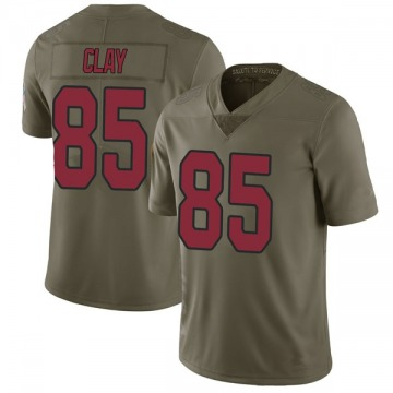 Youth Nike Arizona Cardinals Charles Clay Green 2017 Salute to Service Jersey - Limited