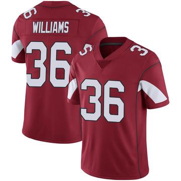 Youth Nike Arizona Cardinals Jarren Williams Cardinal 100th Vapor Jersey - Limited