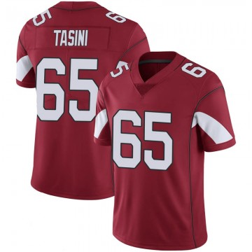 Youth Nike Arizona Cardinals Pasoni Tasini Cardinal 100th Vapor Jersey - Limited